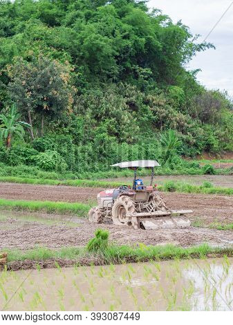 The Tractor Is Plowing Soil To Prepare For Cultivating Rice. In Northern, Thailand In The Rain Seaso