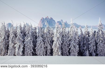 Majestic Landscape With Forest At Winter Time. Scenery Background.