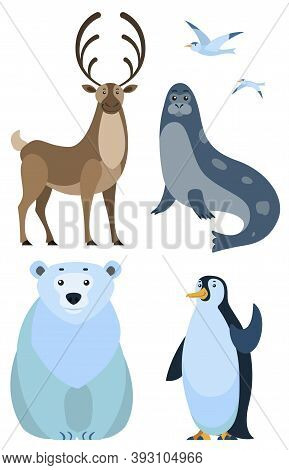 Four Arctic And Antarctic Wild Animals And Birds Isolated On White Background. Emperor Penguin And S