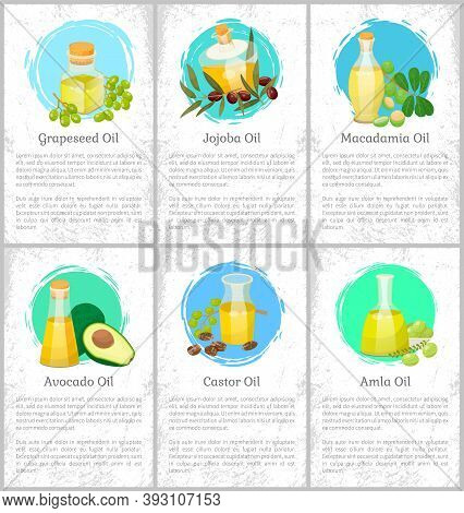 Set Of Six Pictures With Information About Organic Products. Vessels With Liquids For Hair Care. Cas
