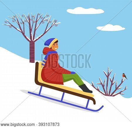 Girl In Red Down Jacket, Knitted Hat Rides On Sled From Snow Slide. Bare Trunk Of Mountain Ash, Snow