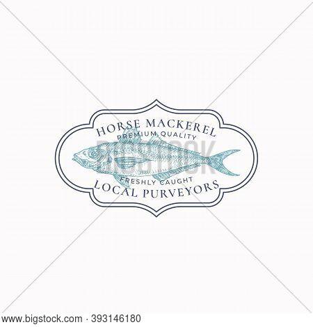 Fish Vintage Frame Badge Or Logo Template. Hand Drawn Wild Horse Mackerel Sketch Emblem With Retro T