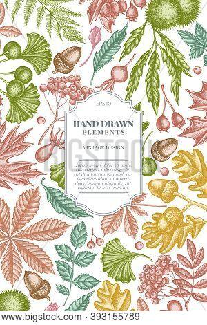 Card Design With Pastel Fern, Dog Rose, Rowan, Ginkgo, Maple, Oak, Horse Chestnut, Chestnut Hawthorn