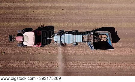 Almond Combine Harvester Processing A Field And Picking Dry Almonds From The Ground And Blowing The