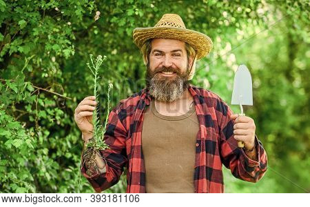 Love Nature. Planting Trees And Shrubs. Gardener Planting Flower With Garden Trowel. Summer Works. F