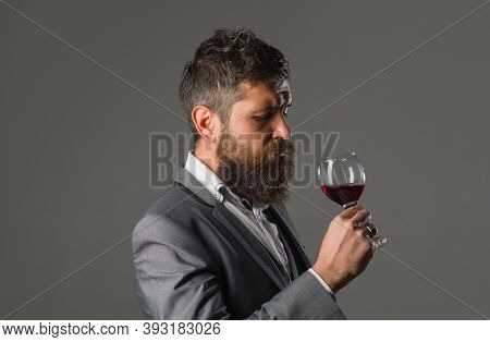 Wine. Bearded Man With Glass Of Wine. Tasting Alcohol. Red Wine. Man With Alcohol. Man In Suit Drink