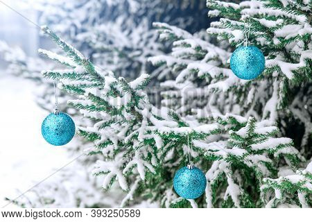 New Years Decoration Balls On A Snowy Branch. Christmas Tree Toy On The Branches Of Spruce Covered W