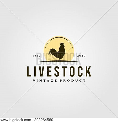 Rooster Livestock Logo With Sun Vintage Vector Illustration Design, Rooster And Sun Logo Design