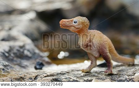 Tyrannosaurus Rex Baby On Nature Background. Closeup Dinosaur And Monster Model. The Dinosaur From T