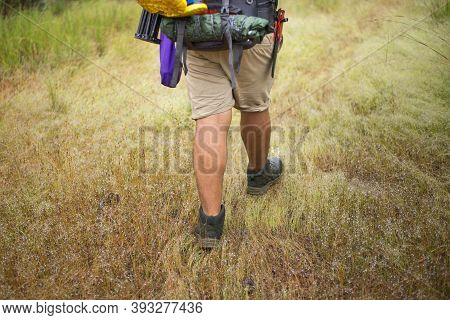 Hiker Walks Through A Small Meadow In A Tropical Forest, Strong Legs.