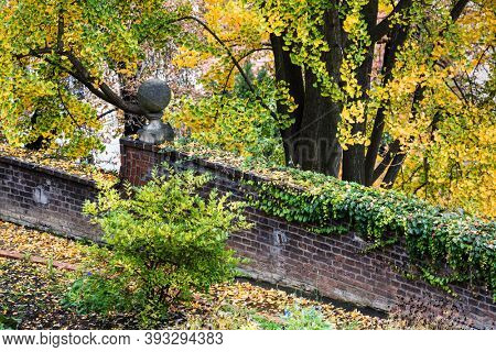 old brick wall in the park
