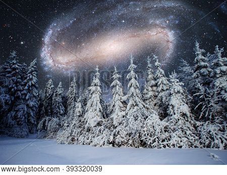 Majestic Landscape With Forest At Winter Night Time With Stars And Galaxy In The Sky. Scenery Backgr