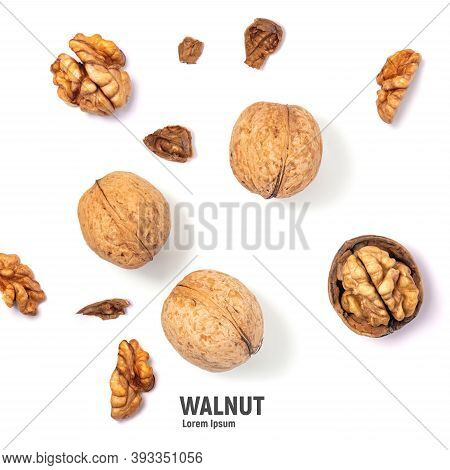 Walnuts Isolated On White Background. Walnut Kernels And Whole Walnuts
