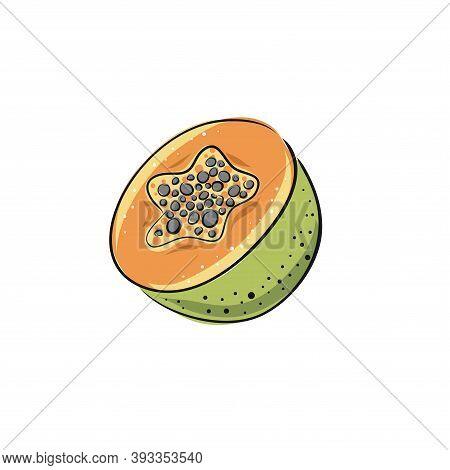 Papaya. Set Of Hand Drawn Papaya. Fresh Organic Food. Vector Illustration With Sketch Fruit.