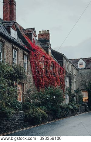 Row Of Old Stone Houses Covered In Colourful Foliage On A Street In Frome, Somerset, Uk, On An Autum
