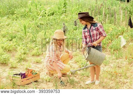 Sisters Together Helping At Farm. Girls Planting Plants. Agriculture Concept. Growing Vegetables. Ho