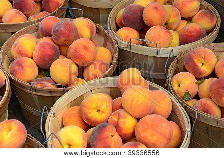 fresh peaches in baskets