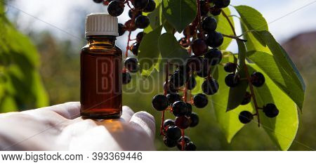 Cherry Extract, Small Amber Bottle - Natural Vitamins And Herbal Medicine. A Cup Of Ripe Bird Cherry