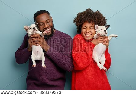 Happy Afro American Lady And Man Pose With Pleasure, Hold Two Little Puppies, Like Spending Time Wit