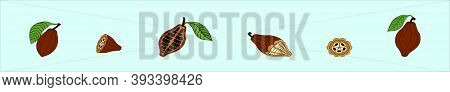 Set Of Cocoa Bean. Modern Cartoon Icon Design Template With Various Models. Vector Illustration Isol
