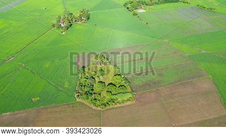 Aerial View Of Landscape With Farmland And Rice Fields. Philippines, Mindanao. Rice Fields In Asia.