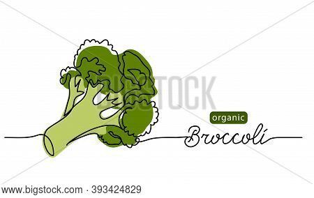 Broccoli Vector Doodle Illustration. One Line Drawing Art Illustration With Lettering Organic Brocco