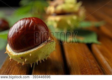 Horse Chestnut In Husk On Wooden Board, Closeup