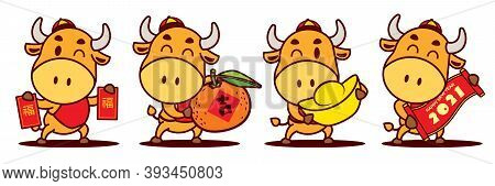 Happy Chinese New Year 2021. Cartoon Cute Ox Character Set Holding Red Packet, Tangerine Orange, Gol