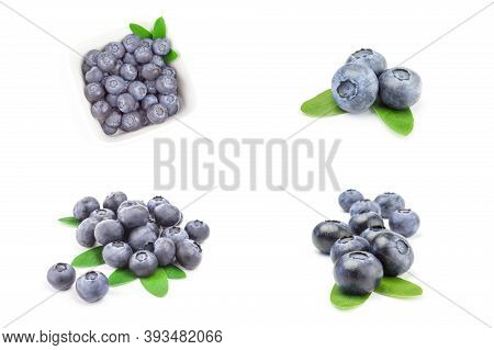 Group Of Bilberry On A White Background