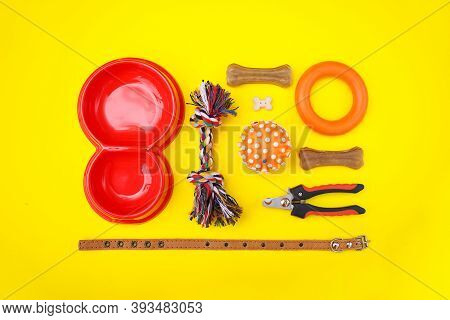 Set Of Accessories For The Dog On A Yellow Background. Red Bowl, Collar, Ball, Goodies. Caring Conce
