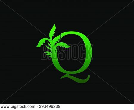 Letter Q Logo Nature Concept, Abstract Green Tree And Leaf Symbol, Initials Q Icon Natural Design St
