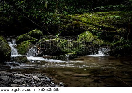 Creek Tumbles Over Mossy Rocks And Log In The Smokies
