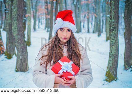 Portrait Of A Beautiful Woman Dressed A Coat. Beauty Winter Girl In Frosty Winter Park. Vintage Wint