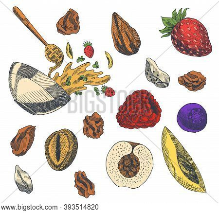 Granola Engraved Style Illustration. Various Berries, Fruits And Nuts. Homemade Delicious Set. Ingre