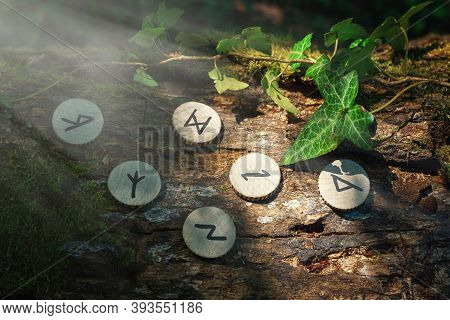 On The Trunk Of A Tree, Covered With Ivy, Are Wooden Scandinavian Runes. Mystic Light. The Concept O