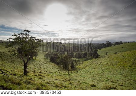 Atherton Tablelands On A Misty Morning In Australia