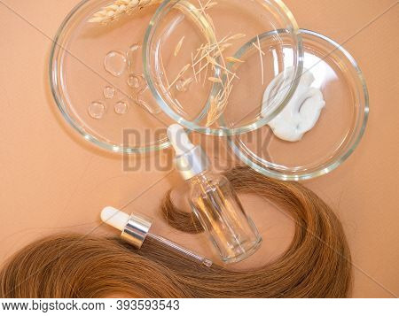 Development Of Eco-friendly And Modern Cosmetics For Hair Care, Shampoo And Conditioner, Hair Care M