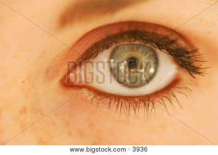 Feminine Eye