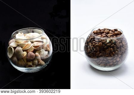 Composition, Still Life, Glass With Coffee Grain, Glass With Shells, Decoration Design, Black And Wh