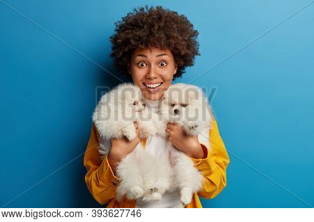 Shot Of Cheerful Afro Woman Poses With Two Dogs, Have Rest After Strolling, Looks Gladfully At Camer
