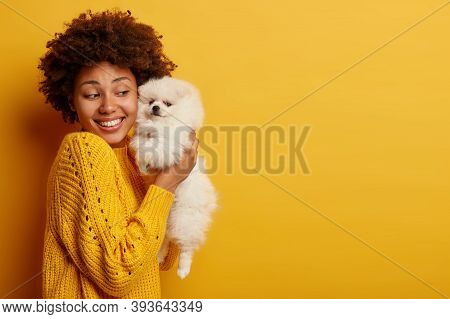 Photo Of Joyful Female Hostess Raises White Puppy In Hands, Holds Tightly Spitz Dog, Wears Knitted S