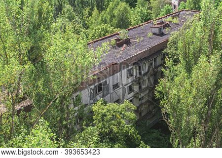 Abandoned House In Chernobyl, Overgrown With Self-seeding Trees