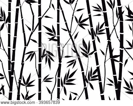 Bamboo Forest Texture. Bamboo Forest Silhouette, Bamboo Plants With Leaves Backdrop, Asian Bamboo St
