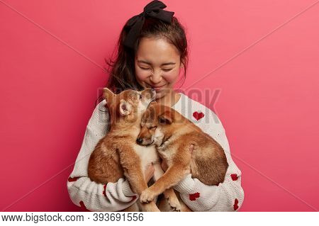 Sincere Happy Woman Plays With Two Puppies, Gets Kiss From Shiba Inu Dog, Expresses Love To Animals,