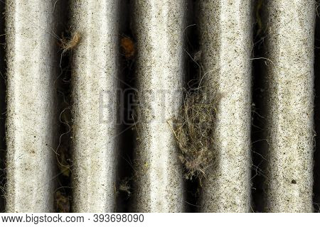 Macro Shot Of A Used And Dirty Cabin Carbon Filter, Visible Leaves And Dirt.