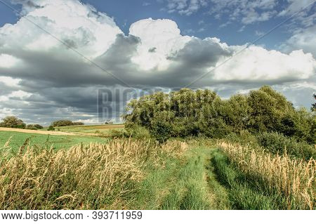Rural Dreamy Landscape On Sunny Summer Day.tranquil Calm Scenery Peaceful Atmosphere. Beautiful Mead