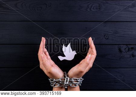 World Human Right Day Concept. Woman Hand Was Tie With A Chain Protecting White Bird, Depicting The