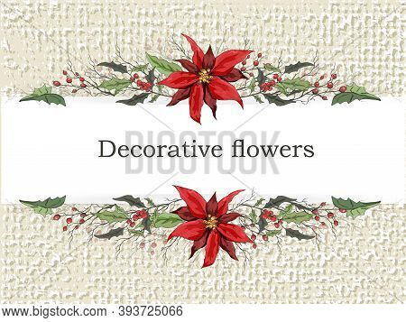 Modern Flower Frame, Banner Under The Text. Isolated Winter Symbols Of Winter: Holly, Poinsettia Han