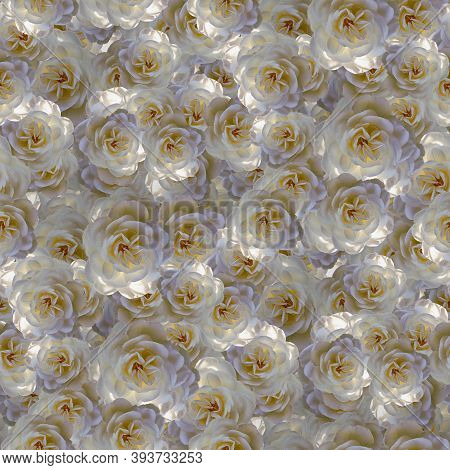 Seamless Floral Pattern Textures. Delicate Roses Flowers. Decorative Design Elements