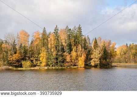 Beautiful Fall Season Colors By Lakeside In The Swedish Province Smaland